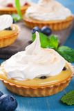 Homemade tartlets with lime curd and meringue Royalty Free Stock Photo