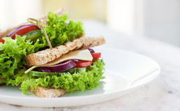 Homemade tasty vegetarian sandwich with fresh vegetables and cheese. Copy space, horizontal royalty free stock photo