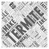 Homemade Termite Killer word cloud concept word cloud concept  background Royalty Free Stock Photos