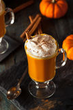 Homemade Thanksgiving Boozy Pumpkin Cocktail Royalty Free Stock Images