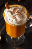 Homemade Thanksgiving Boozy Pumpkin Cocktail Stock Images