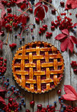 Homemade Thanksgiving raspberry tart pie with jam on wooden table. Autumn creative composition decoration. Stock Images
