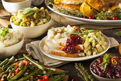 Homemade Thanksgiving Turkey on a Plate. With Stuffing and Potatoes stock image