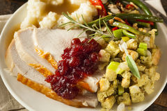 Homemade Thanksgiving Turkey on a Plate Royalty Free Stock Image