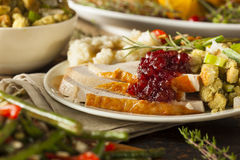 Homemade Thanksgiving Turkey on a Plate Stock Photography