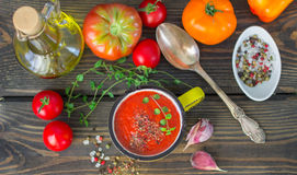 Homemade thick spicy vegetable soup Stock Image