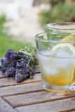 Homemade thyme syrup drink Stock Photos