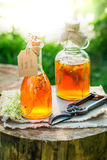 Homemade tincture with honey, linden and alcohol in garden Royalty Free Stock Image