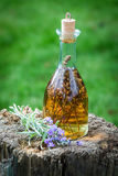 Homemade tincture made of lavender in summer Royalty Free Stock Images