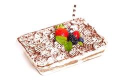 Homemade Tiramisu Cake Royalty Free Stock Photo