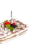 Homemade Tiramisu Cake Stock Photography