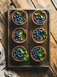 Homemade Tiramisu dessert with cinnamon and berries in wooden tray Royalty Free Stock Photography