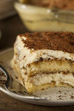 Homemade Tiramisu for Dessert Royalty Free Stock Photos