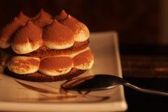 Homemade tiramisu dessert Royalty Free Stock Image