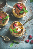 Homemade Tiramisu in glasses with raspberries and fresh mint leaves Stock Photos