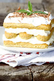 Homemade tiramisu Royalty Free Stock Photo
