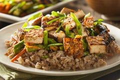 Free Homemade Tofu Stir Fry Royalty Free Stock Photos - 46523638