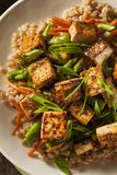 Homemade Tofu Stir Fry Stock Photo