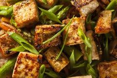 Homemade Tofu Stir Fry Royalty Free Stock Images