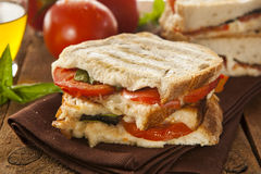 Homemade Tomato and Mozzarella Panini Royalty Free Stock Image