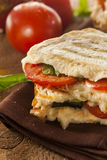 Homemade Tomato and Mozzarella Panini Stock Photos