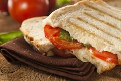 Homemade Tomato and Mozzarella Panini Royalty Free Stock Photo