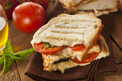 Homemade Tomato and Mozzarella Panini Royalty Free Stock Photography
