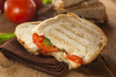 Homemade Tomato and Mozzarella Panini Stock Photography
