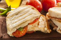 Homemade Tomato and Mozzarella Panini Stock Images