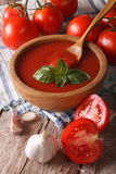 Homemade tomato sauce with garlic and basil in a bowl closeup. v Royalty Free Stock Image