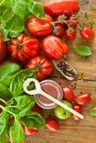 Homemade tomato sauce Royalty Free Stock Photos