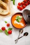 Homemade tomato soup Stock Image