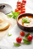 Homemade tomato soup Stock Images