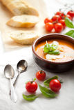 Homemade tomato soup Royalty Free Stock Photos