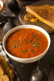 Homemade Tomato Soup with Grilled Cheese Stock Photography