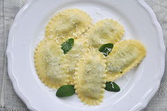 Homemade tortellini Royalty Free Stock Photo
