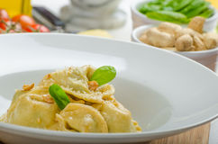 Homemade tortellini stuffed with spinach and garlic Stock Photography