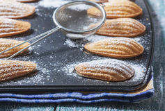 Homemade Traditional french madeleines cookies in a special made Royalty Free Stock Photography