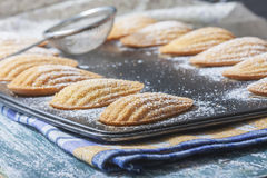 Homemade Traditional french madeleines cookies in a special made Stock Images