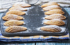 Homemade Traditional french madeleines cookies in a special made Stock Photo