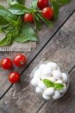 Homemade traditional italian mozzarella cheese Royalty Free Stock Photos