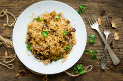 Homemade traditional Italian mushroom risotto Stock Image