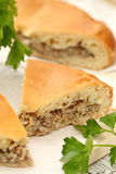 Homemade traditional russian pie with meat and rice Stock Image