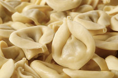 Homemade traditional tortellini Stock Images