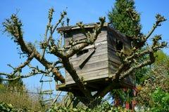 Homemade Treehouse Royalty Free Stock Photography