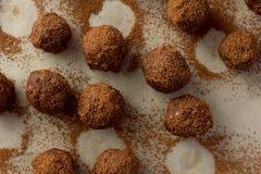 Homemade truffle balls Stock Images