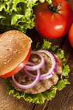 Homemade Turkey Burger on a Bun Royalty Free Stock Photo