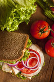 Homemade Turkey Sandwich Stock Images