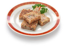 Homemade turnip cake, chinese dim sum dish Stock Photography