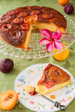 Homemade upside-down plum cake, with slice on plate Royalty Free Stock Image